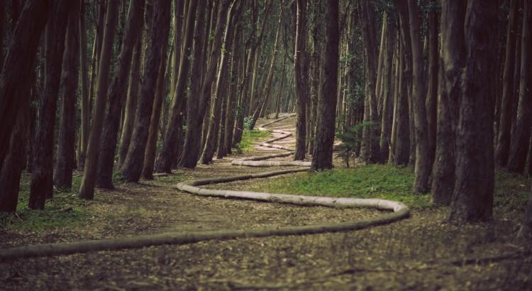 Mierzenie postępów na drodze doskonalenia