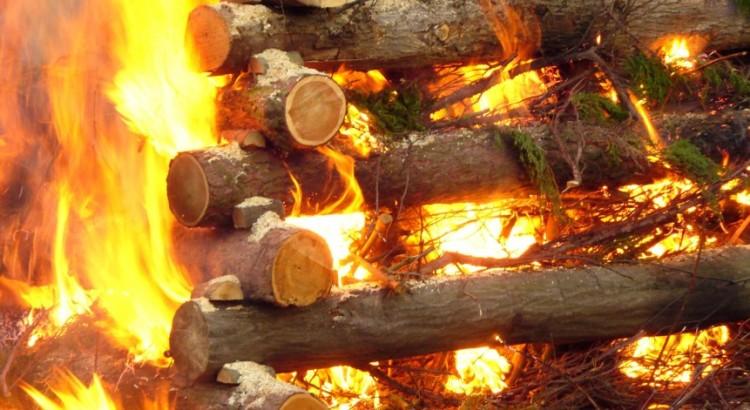 Gemba unikana przez menadżerów jak ogień